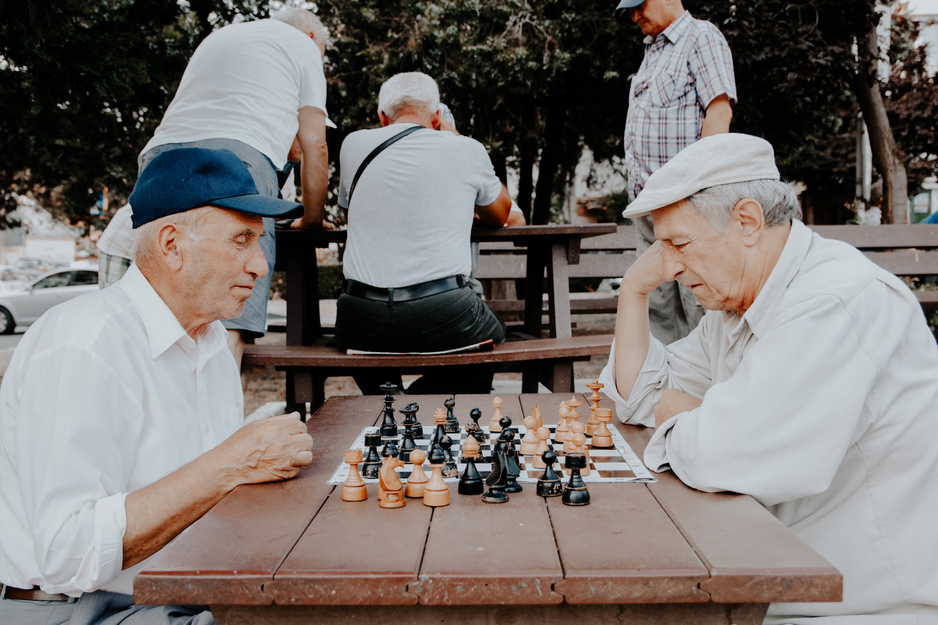Healthy Aging and Fighting Dementia